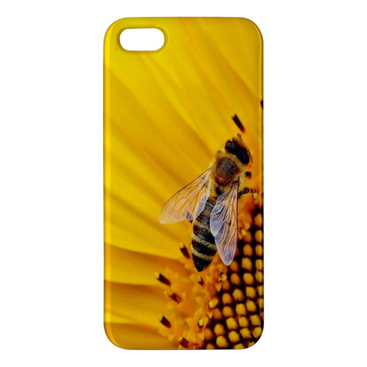 Sun Flower Bees Summer Garden iPhone 5S/ SE Premium Hardshell Case