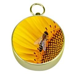 Sun Flower Bees Summer Garden Gold Compasses