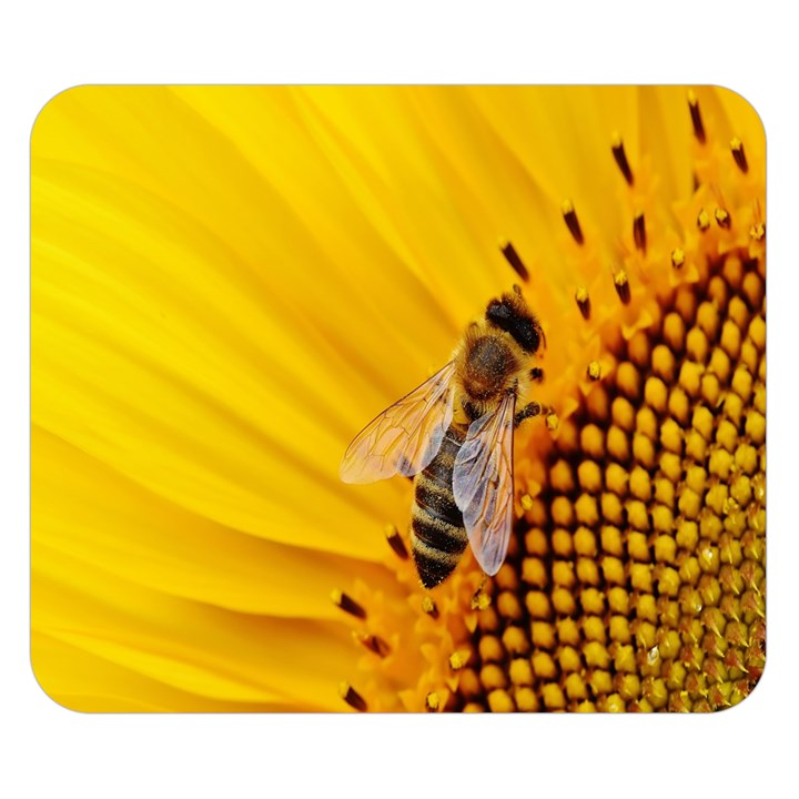 Sun Flower Bees Summer Garden Double Sided Flano Blanket (Small)