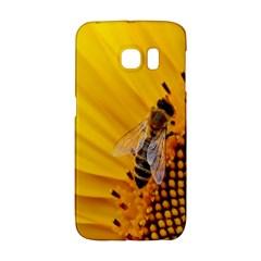 Sun Flower Bees Summer Garden Galaxy S6 Edge