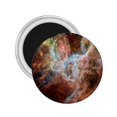 Tarantula Nebula Central Portion 2.25  Magnets