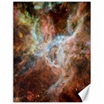 Tarantula Nebula Central Portion Canvas 12  x 16   16 x12 Canvas - 1