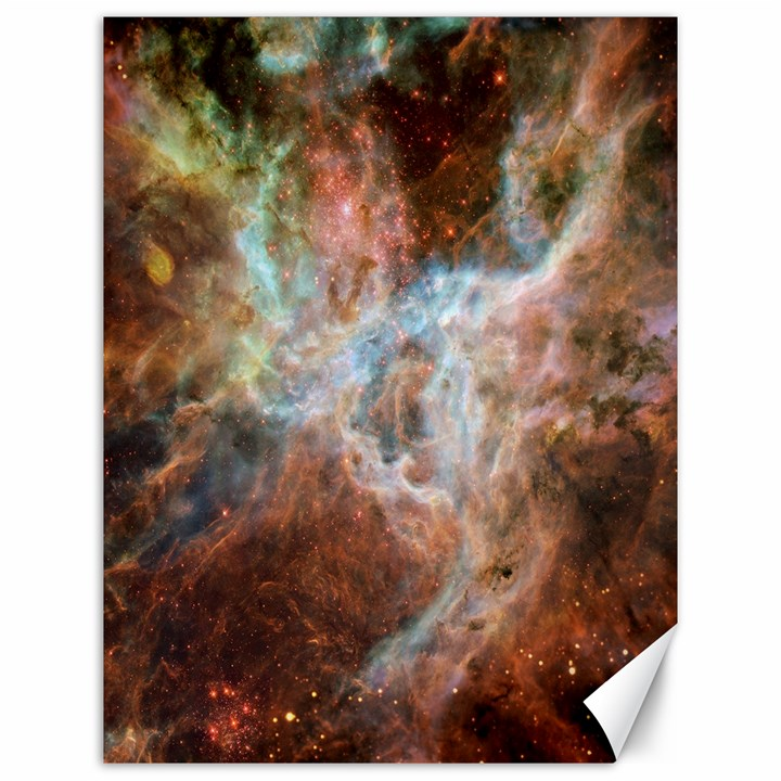 Tarantula Nebula Central Portion Canvas 12  x 16