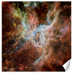 Tarantula Nebula Central Portion Canvas 16  x 16