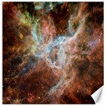 Tarantula Nebula Central Portion Canvas 16  x 16   16 x16 Canvas - 1