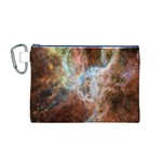 Tarantula Nebula Central Portion Canvas Cosmetic Bag (M) Front