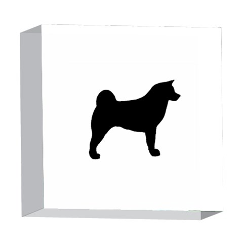Akita Silo2 5  x 5  Acrylic Photo Blocks