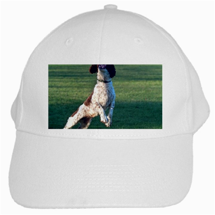 English Springer Catching Ball White Cap