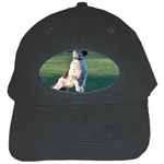 English Springer Catching Ball Black Cap Front