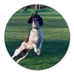 English Springer Catching Ball Round Mousepads Front
