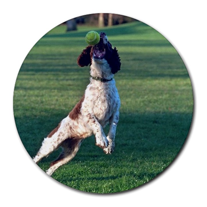 English Springer Catching Ball Round Mousepads