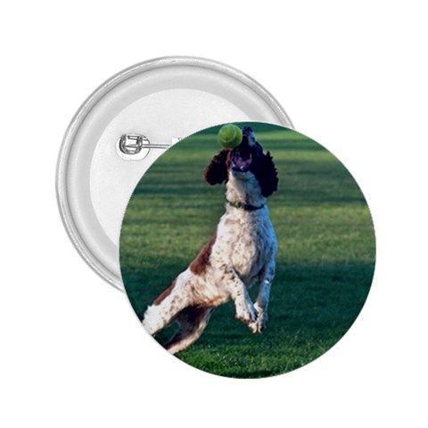 English Springer Catching Ball 2.25  Buttons