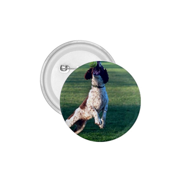 English Springer Catching Ball 1.75  Buttons