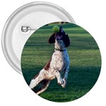 English Springer Catching Ball 3  Buttons Front