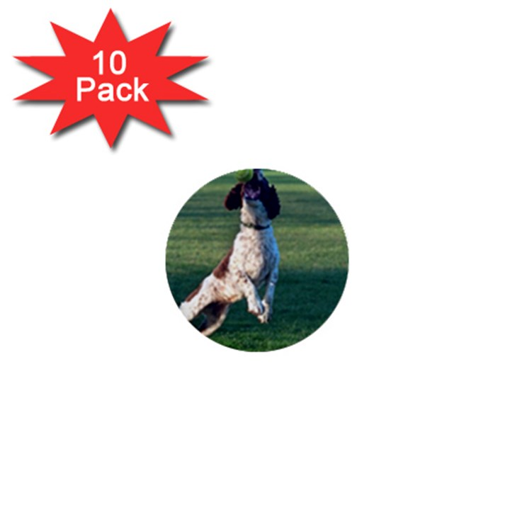 English Springer Catching Ball 1  Mini Buttons (10 pack)