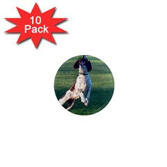 English Springer Catching Ball 1  Mini Magnet (10 pack)