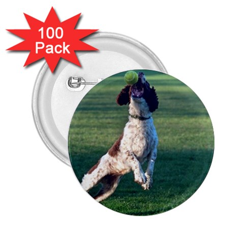 English Springer Catching Ball 2.25  Buttons (100 pack)
