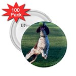 English Springer Catching Ball 2.25  Buttons (100 pack)  Front