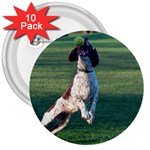 English Springer Catching Ball 3  Buttons (10 pack)  Front