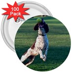 English Springer Catching Ball 3  Buttons (100 pack)  Front