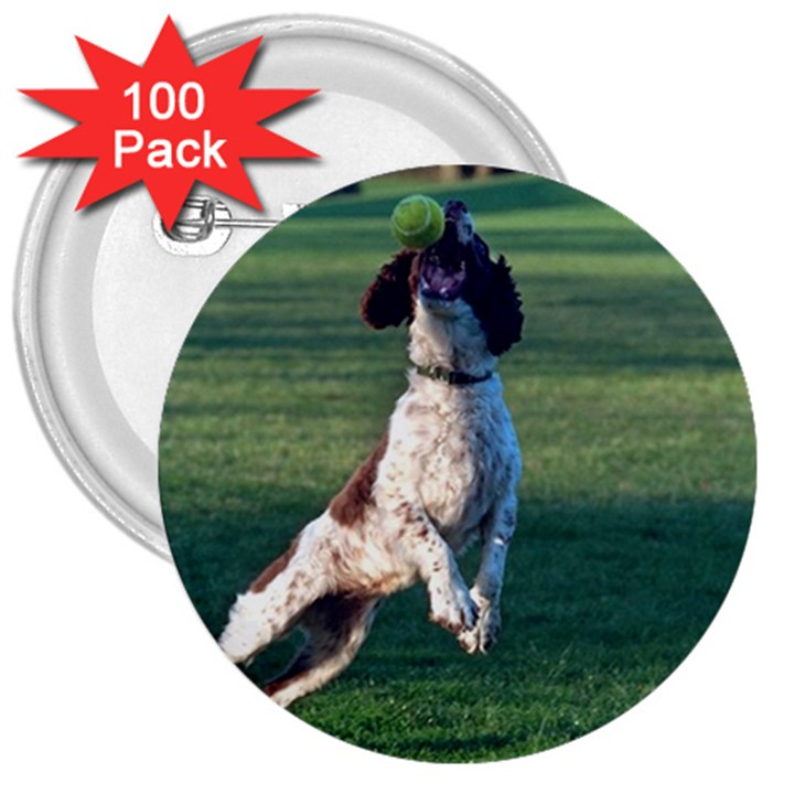 English Springer Catching Ball 3  Buttons (100 pack)