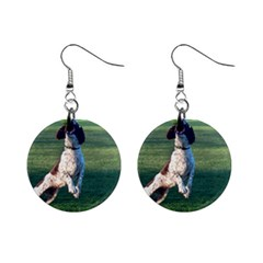 English Springer Catching Ball Mini Button Earrings