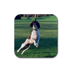 English Springer Catching Ball Rubber Coaster (Square)