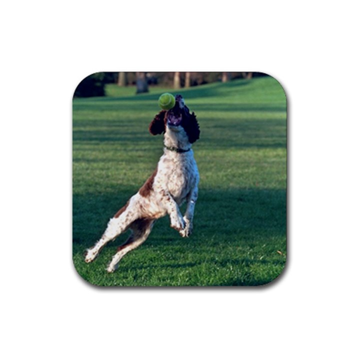 English Springer Catching Ball Rubber Square Coaster (4 pack)