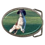 English Springer Catching Ball Belt Buckles Front