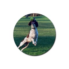 English Springer Catching Ball Rubber Round Coaster (4 pack)