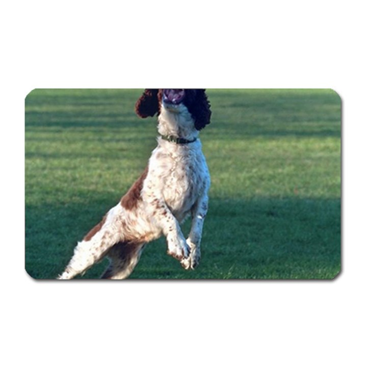 English Springer Catching Ball Magnet (Rectangular)