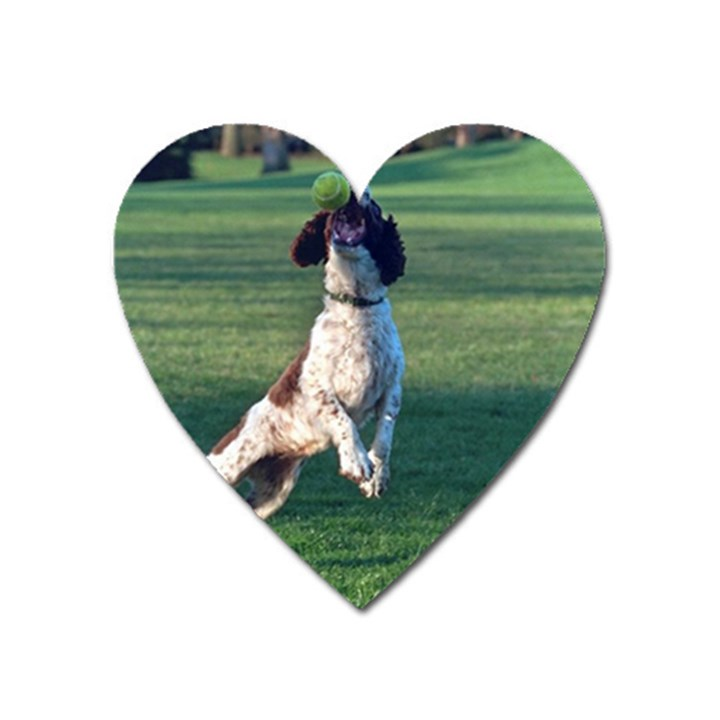 English Springer Catching Ball Heart Magnet