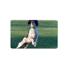 English Springer Catching Ball Magnet (Name Card)