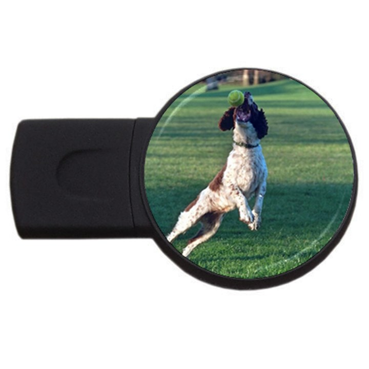 English Springer Catching Ball USB Flash Drive Round (2 GB)