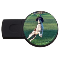 English Springer Catching Ball USB Flash Drive Round (1 GB)