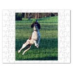 English Springer Catching Ball Rectangular Jigsaw Puzzl Front