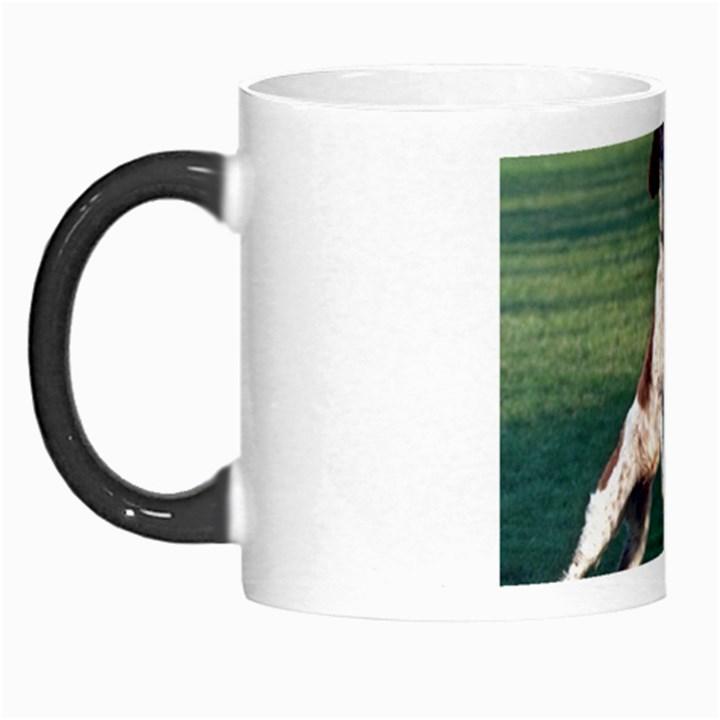 English Springer Catching Ball Morph Mugs