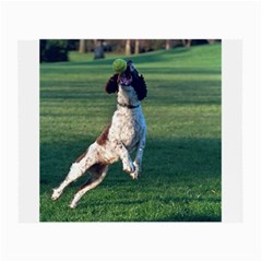 English Springer Catching Ball Small Glasses Cloth