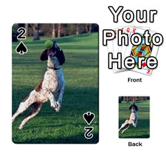 English Springer Catching Ball Playing Cards 54 Designs