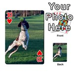 English Springer Catching Ball Playing Cards 54 Designs  Front - Heart10
