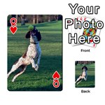 English Springer Catching Ball Playing Cards 54 Designs  Front - HeartQ