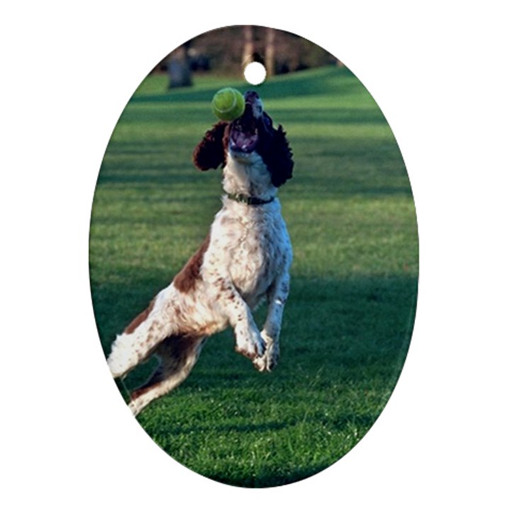 English Springer Catching Ball Oval Ornament (Two Sides)