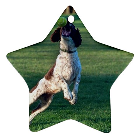 English Springer Catching Ball Star Ornament (Two Sides)