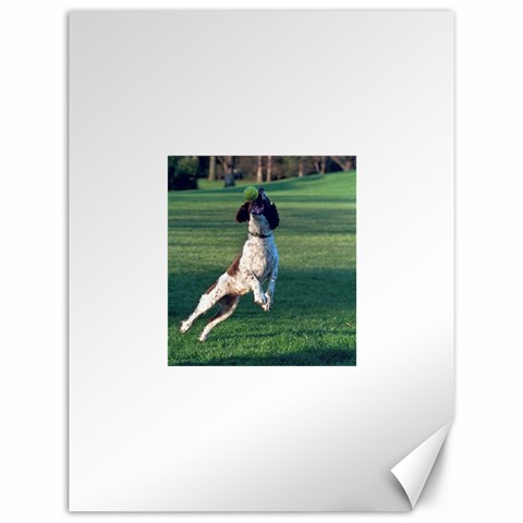 English Springer Catching Ball Canvas 12  x 16