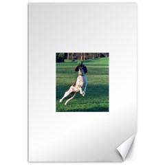 English Springer Catching Ball Canvas 12  x 18