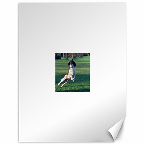 English Springer Catching Ball Canvas 18  x 24