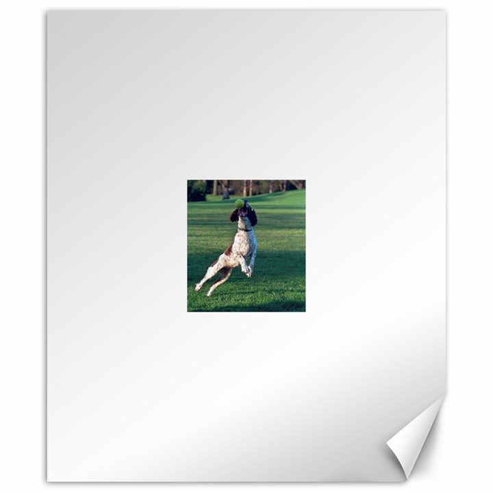 English Springer Catching Ball Canvas 20  x 24