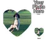 English Springer Catching Ball Playing Cards 54 (Heart)  Back