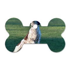 English Springer Catching Ball Dog Tag Bone (Two Sides)