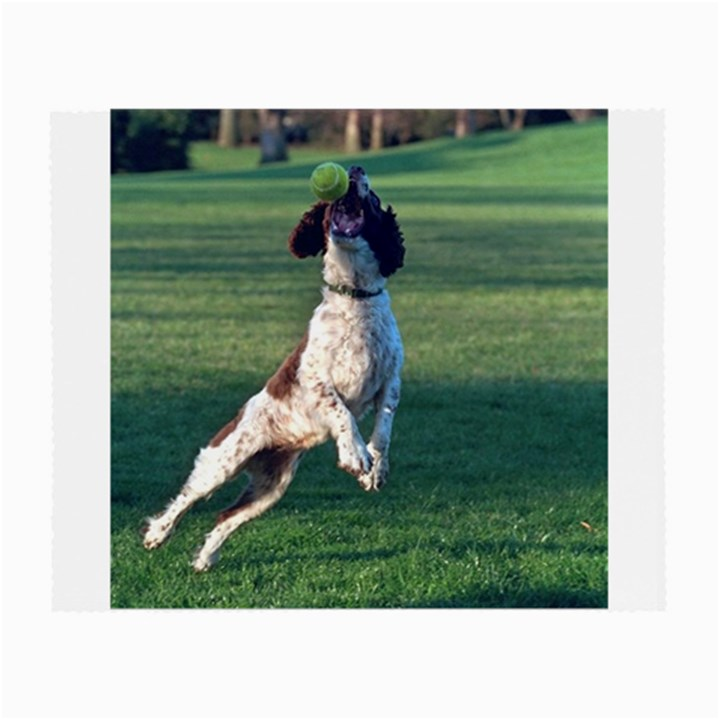 English Springer Catching Ball Small Glasses Cloth (2-Side)